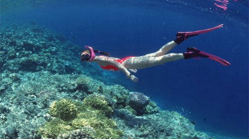 西沙群岛属于热带海洋气候,长夏无冬,全年平均气